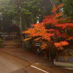 【中止】11/21-23熊野リトリート!紅葉ウォークと玉置神社&熊野三山巡り!