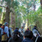 【熊野古道】コロナの影響はある?熊野本宮大社の例大祭は?語り部ガイドは?平安衣装体験が中止?