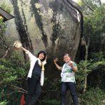 【熊野の女神に導かれて】熊野古道体験談!カリスマガイド?!と呼ばれて…その後昇格?!