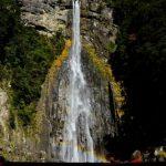 熊野リトリート4月「玉置神社と熊野三山」熊野の自然に癒され浄化!蘇り」エネルギーアップ